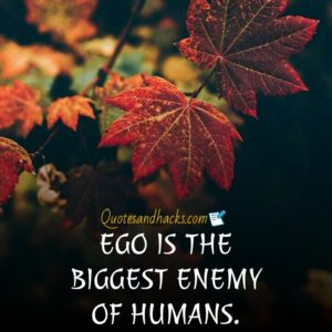 Ego is the enemy quotes