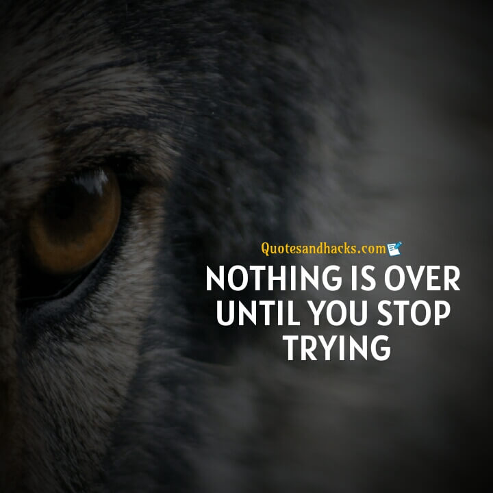 Wolf motivational quotes