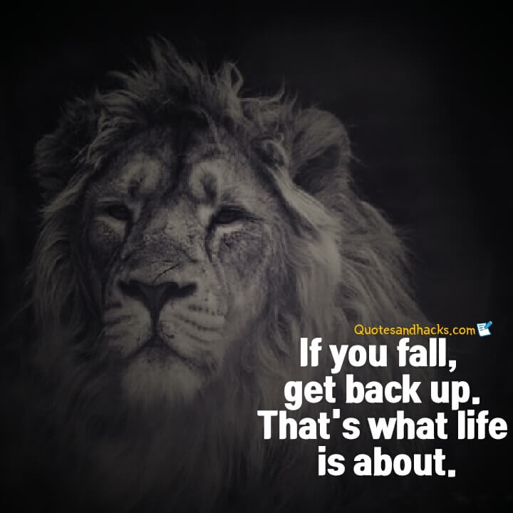 Come back stronger quotes