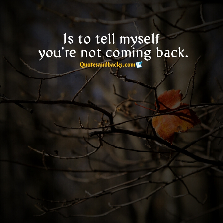 don't come back quotes