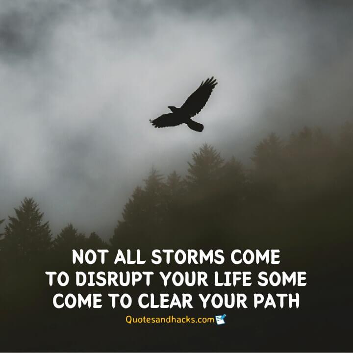 Eagle quotes success