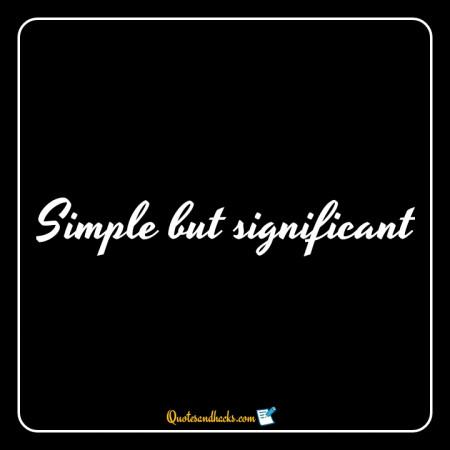 simple quotes for bio