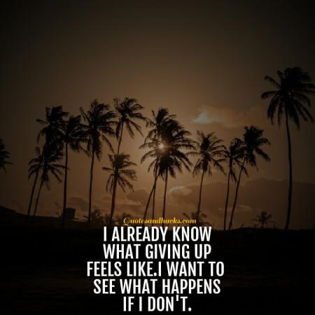 Don't quit quotes